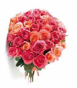 Franchise rapid 39 flore livraison de fleurs vente en for Composer bouquet en ligne