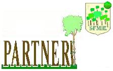 Partner-SFMIE