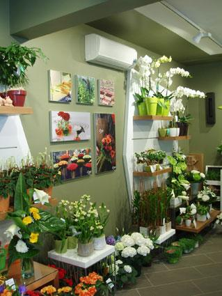 franchise oya fleurs devenir franchis fleuriste et sp cialiste en composition florale et. Black Bedroom Furniture Sets. Home Design Ideas