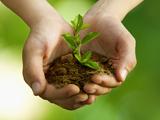 Franchise Environnement écologie